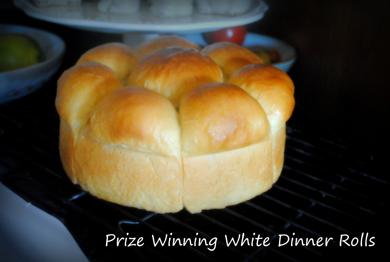 White Dinner Rolls Blog
