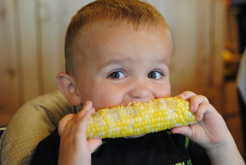 Iowa Sweet Corn