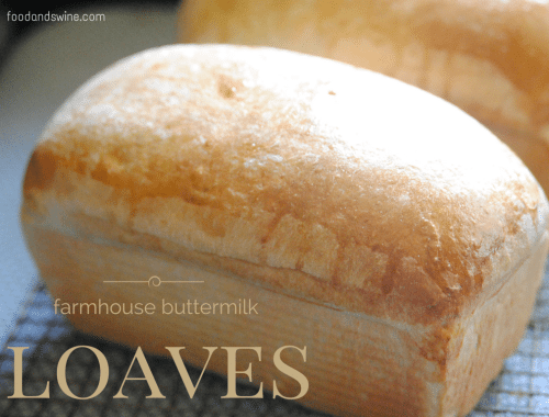 buttermilkloaves
