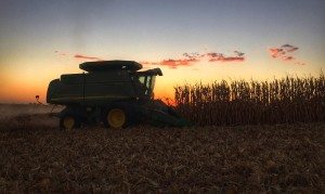Harvest2015FinishingUp