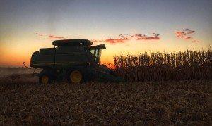 Harvest2015FinishingUp
