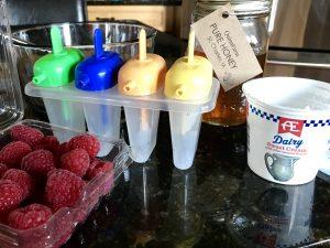 AE_Whole_Milk_Yogurt_Pops